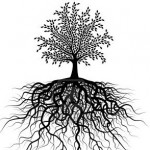 treeoflife1